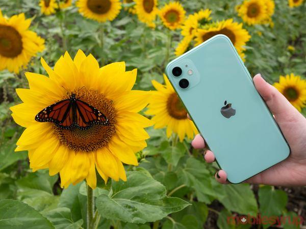 iphone-11-front-1.jpg